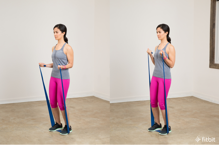 Resistance Band Bicep Curl