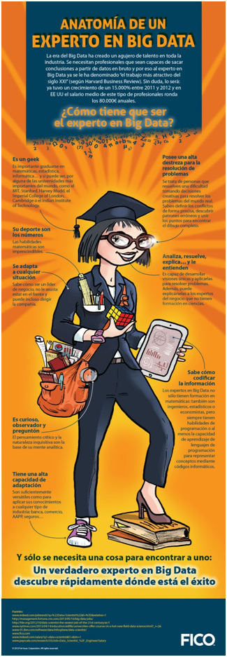 experto especialista profesional big data infografía
