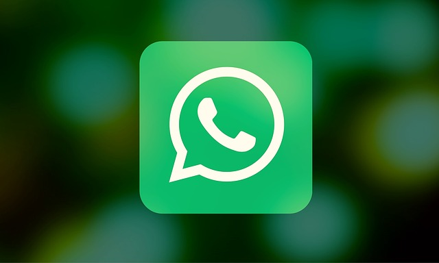 WhatsApp , ¿ la nueva Red Social ?